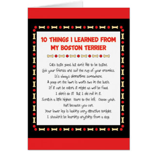 Funny Things I Learned From My Boston Terrier Card