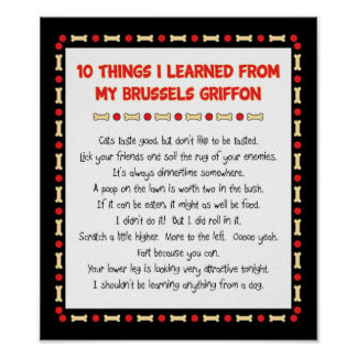 Funny Things I Learned From My Brussels Griffon Poster