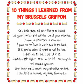 Funny Things I Learned From My Brussels Griffon Statuette