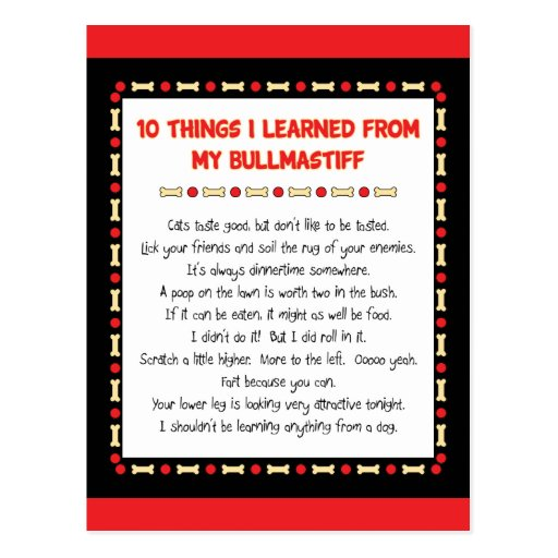 Funny Things I Learned From My Bullmastiff Postcard