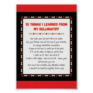 Funny Things I Learned From My Bullmastiff Posters
