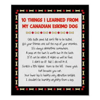 Funny Things I Learned From My Canadian Eskimo Dog Poster