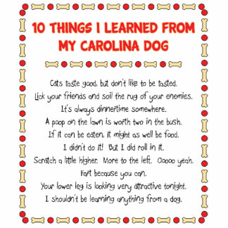 Funny Things I Learned From My Carolina Dog Photo Cutout