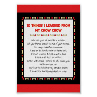 Funny Things I Learned From My Chow Chow Poster