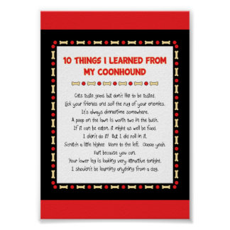 Funny Things I Learned From My Coonhound Poster
