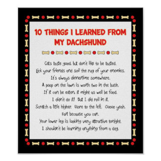 Funny Things I Learned From My Dachshund Print