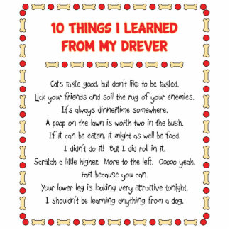 Funny Things I Learned From My Drever Photo Cutout