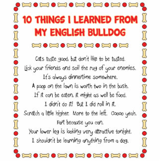 Funny Things I Learned From My English Bulldog Standing Photo Sculpture