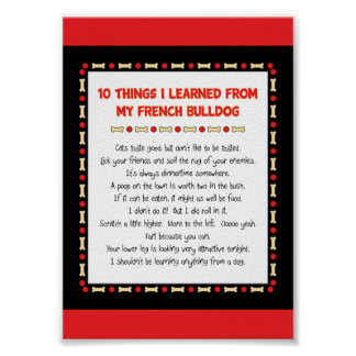 Funny Things I Learned From My French Bulldog Print