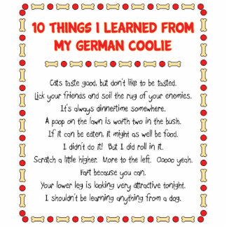 Funny Things I Learned From My German Coolie Photo Cutout