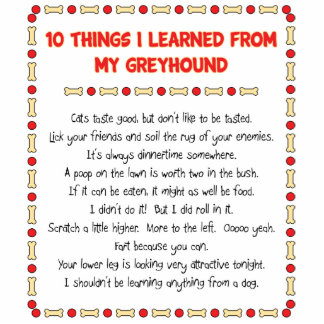 Funny Things I Learned From My Greyhound Standing Photo Sculpture