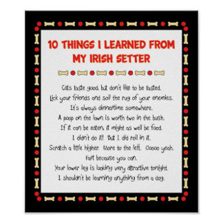 Funny Things I Learned From My Irish Setter Poster