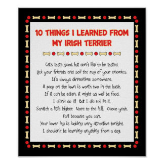 Funny Things I Learned From My Irish Terrier Poster