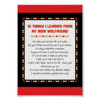Funny Things I Learned From My Irish Wolfhound Print