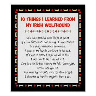 Funny Things I Learned From My Irish Wolfhound Poster