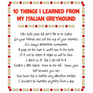 Funny Things I Learned From My Italian Greyhound Standing Photo Sculpture