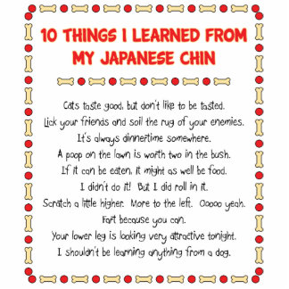 Funny Things I Learned From My Japanese Chin Photo Cutout
