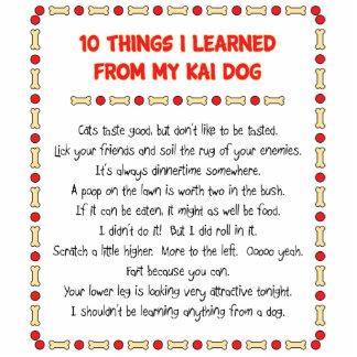 Funny Things I Learned From My Kai Dog Cut Outs