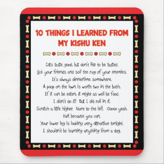 Funny Things I Learned From My Kishu Ken Mouse Pad