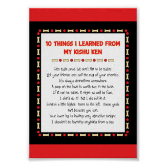Funny Things I Learned From My Kishu Ken Poster