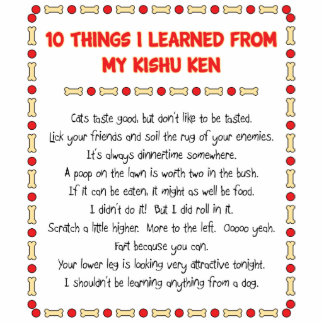 Funny Things I Learned From My Kishu Ken Standing Photo Sculpture