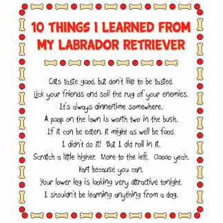 Funny Things I Learned From My Labrador Retriever Standing Photo Sculpture