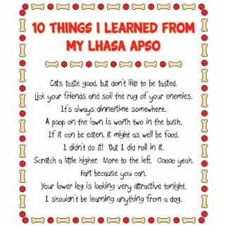 Funny Things I Learned From My Lhasa Apso Standing Photo Sculpture