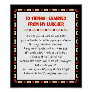 Funny Things I Learned From My Lurcher Poster