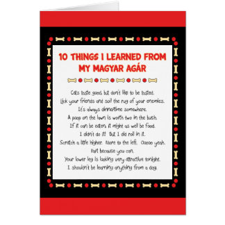 Funny Things I Learned From My Magyar Agár Card