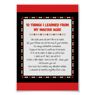 Funny Things I Learned From My Magyar Agár Poster
