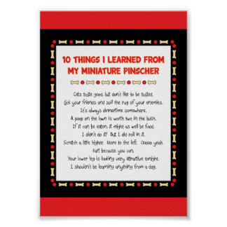 Funny Things I Learned From My Miniature Pinscher Poster