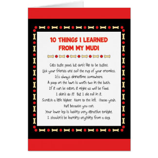 Funny Things I Learned From My Mudi Card