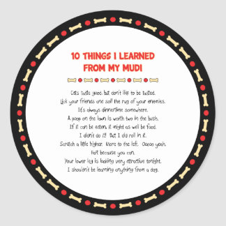 Funny Things I Learned From My Mudi Classic Round Sticker