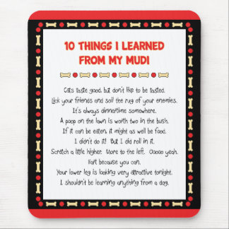 Funny Things I Learned From My Mudi Mouse Pad