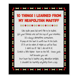 Funny Things I Learned From My Neapolitan Mastiff Poster