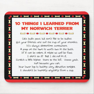 Funny Things I Learned From My Norwich Terrier Mousepads