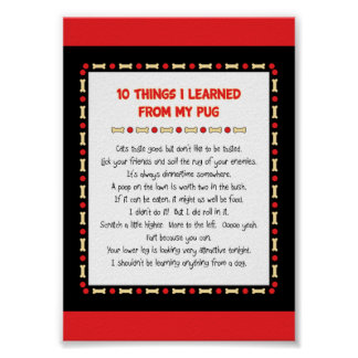 Funny Things I Learned From My Pug Poster