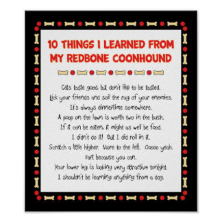 Funny Things I Learned From My Redbone Coonhound Poster