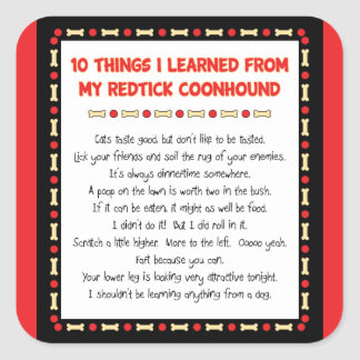 Funny Things I Learned From My Redtick Coonhound Square Sticker