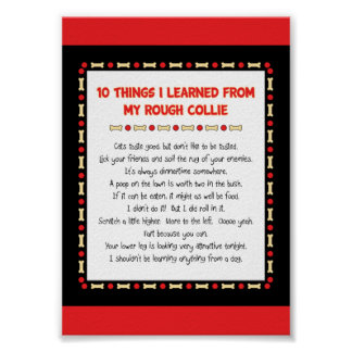 Funny Things I Learned From My Rough Collie Print