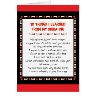 Funny Things I Learned From My Shiba Inu Card