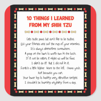 Funny Things I Learned From My Shih Tzu Square Sticker