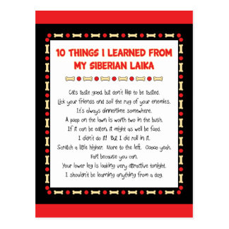 Funny Things I Learned From My Siberian Laika Postcard