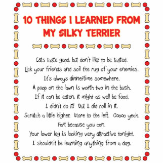 Funny Things I Learned From My Silky Terrier Standing Photo Sculpture