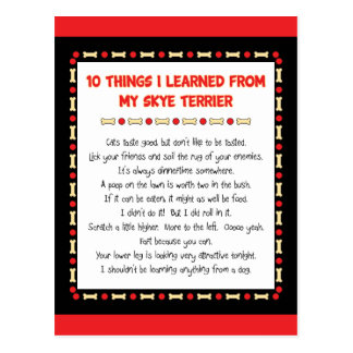 Funny Things I Learned From My Skye Terrier Post Cards