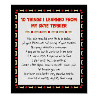 Funny Things I Learned From My Skye Terrier Poster