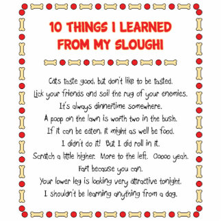 Funny Things I Learned From My Sloughi Cut Outs