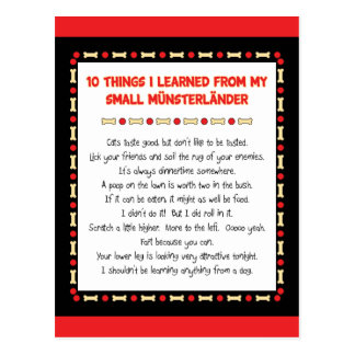 Funny Things I Learned From My Small Münsterländer Postcard