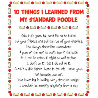 Funny Things I Learned From My Standard Poodle Standing Photo Sculpture
