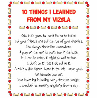 Funny Things I Learned From My Vizsla Statuette